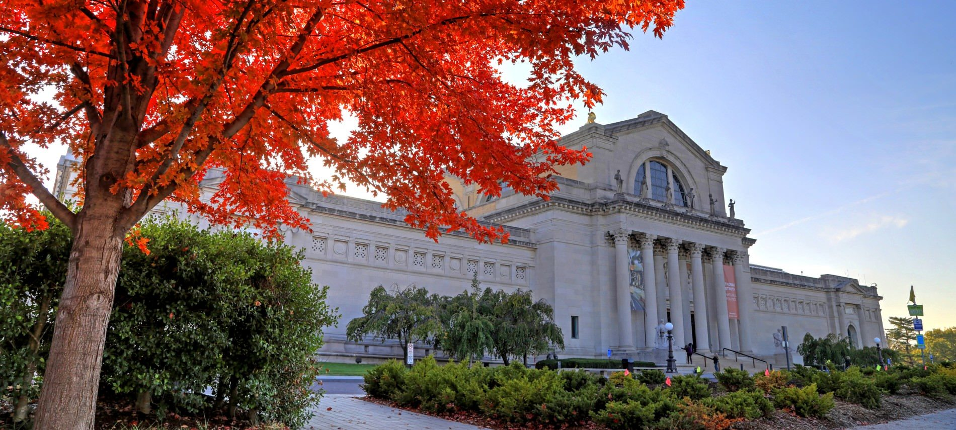 Forest Park Art Museum front with fall oak tree